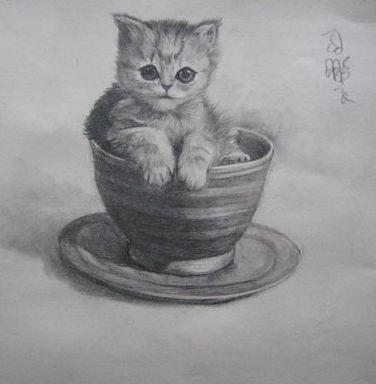 动物素描作品