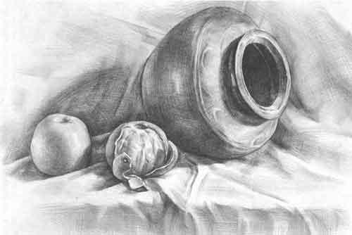 罐子桔子苹果静物素描步骤
