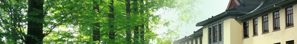 南京林业大学招生网,南京林业大学招生信息,艺术类招生简章,录取分数线,成绩查询