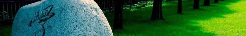 四川师范大学招生网,四川师范大学招生信息,艺术类招生简章,录取分数线,成绩查询