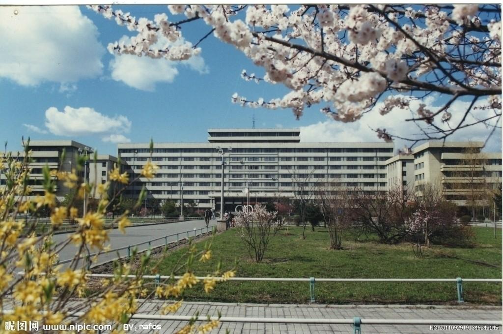 东北农业大学