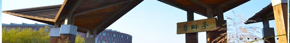 沈阳理工大学招生网,沈阳理工大学招生信息,艺术类招生简章,录取分数线,成绩查询