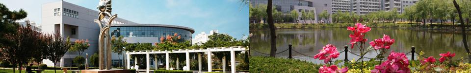 西安交通大学城市学院招生网,西安交通大学城市学院招生信息,艺术类招生简章,录取分数线,成绩查询