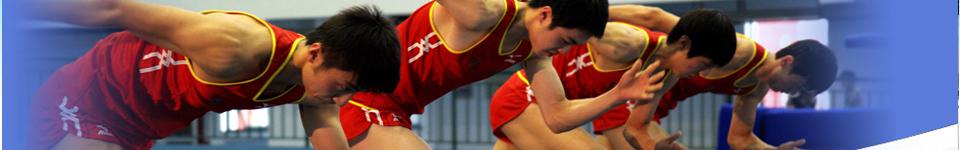 上海体育学院招生网,上海体育学院招生信息,艺术类招生简章,录取分数线,成绩查询