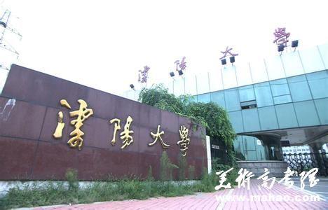 2014年沈阳大学艺术类外省招生简章