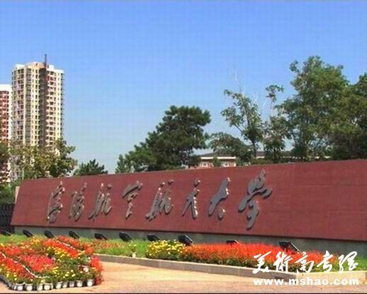 沈阳航空航天大学2014年空乘类专业招生简章