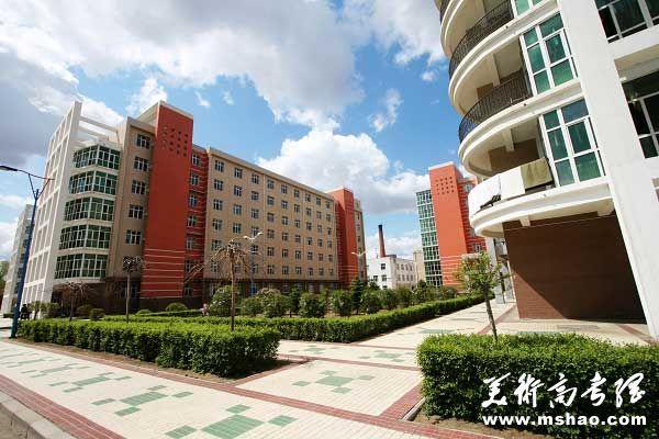 齐齐哈尔大学2014年艺术类专业招生简章