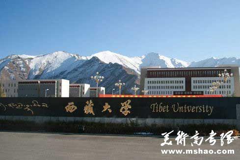 西藏大学2018年艺术类专业招生简章