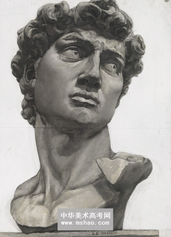 里巴 高尔基 大卫 塔头石膏像素描作品2 石膏像素描 2014年美术高考图片