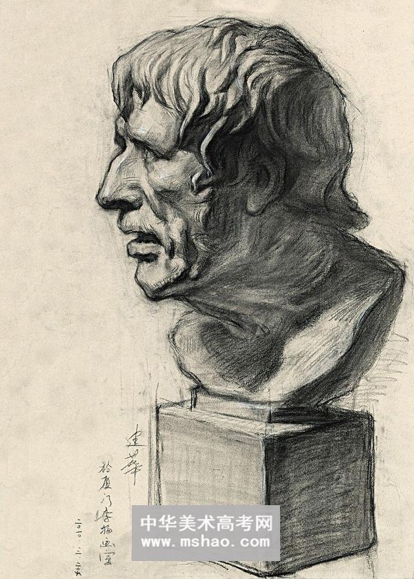 石膏头像素描人物阿格里巴展示