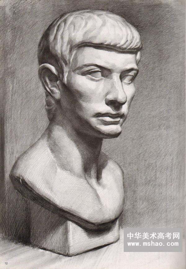 伏尔泰 海盗 马赛石膏素描头像作品
