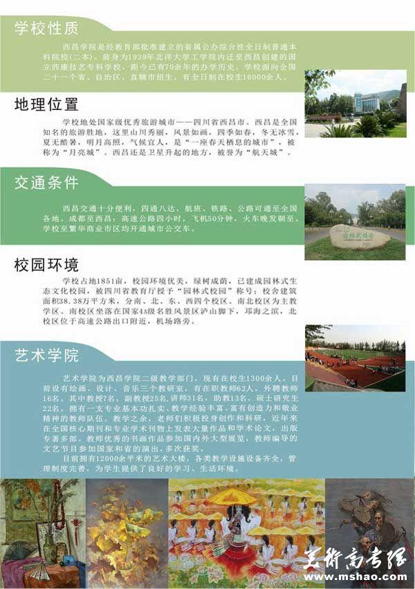 西昌学院2014年艺术类专业招生简章(省外)