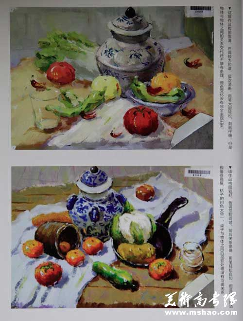 上海视觉艺术学院历年色彩静物优秀试卷