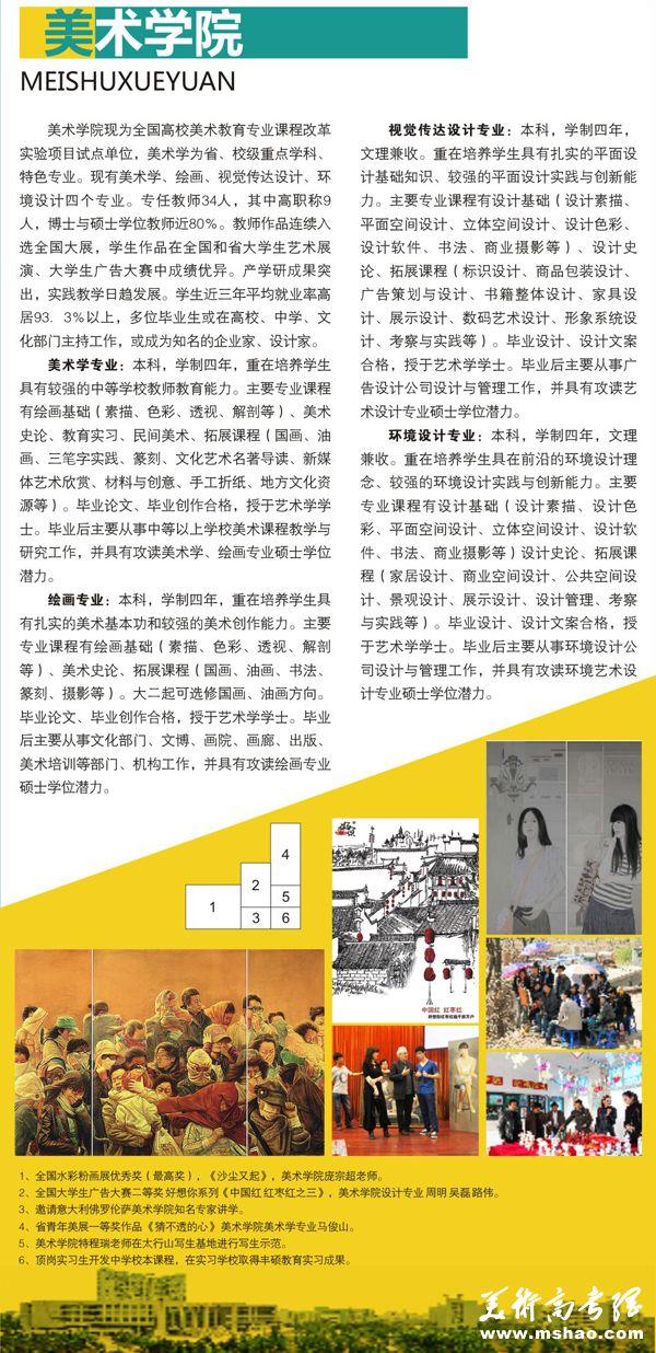 阜阳师范学院2015年艺术类专业招生简章6