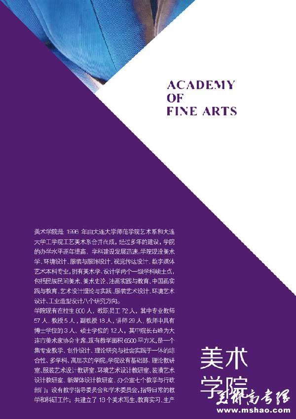 大连大学2015年艺术专业招生简章9