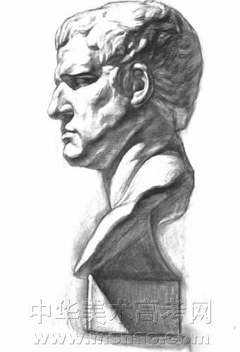 石膏阿格里巴素描作品(5)