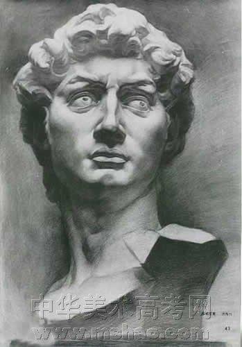 大卫石膏像素描头像展示