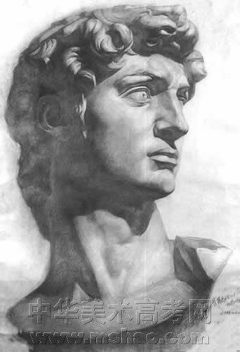 石膏大卫素描作品 4
