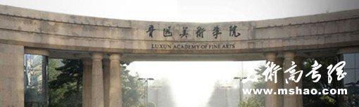 2011年鲁迅美术学院专业成绩查询