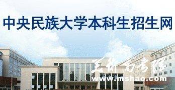2011年中央民族大学艺术类专业成绩查询